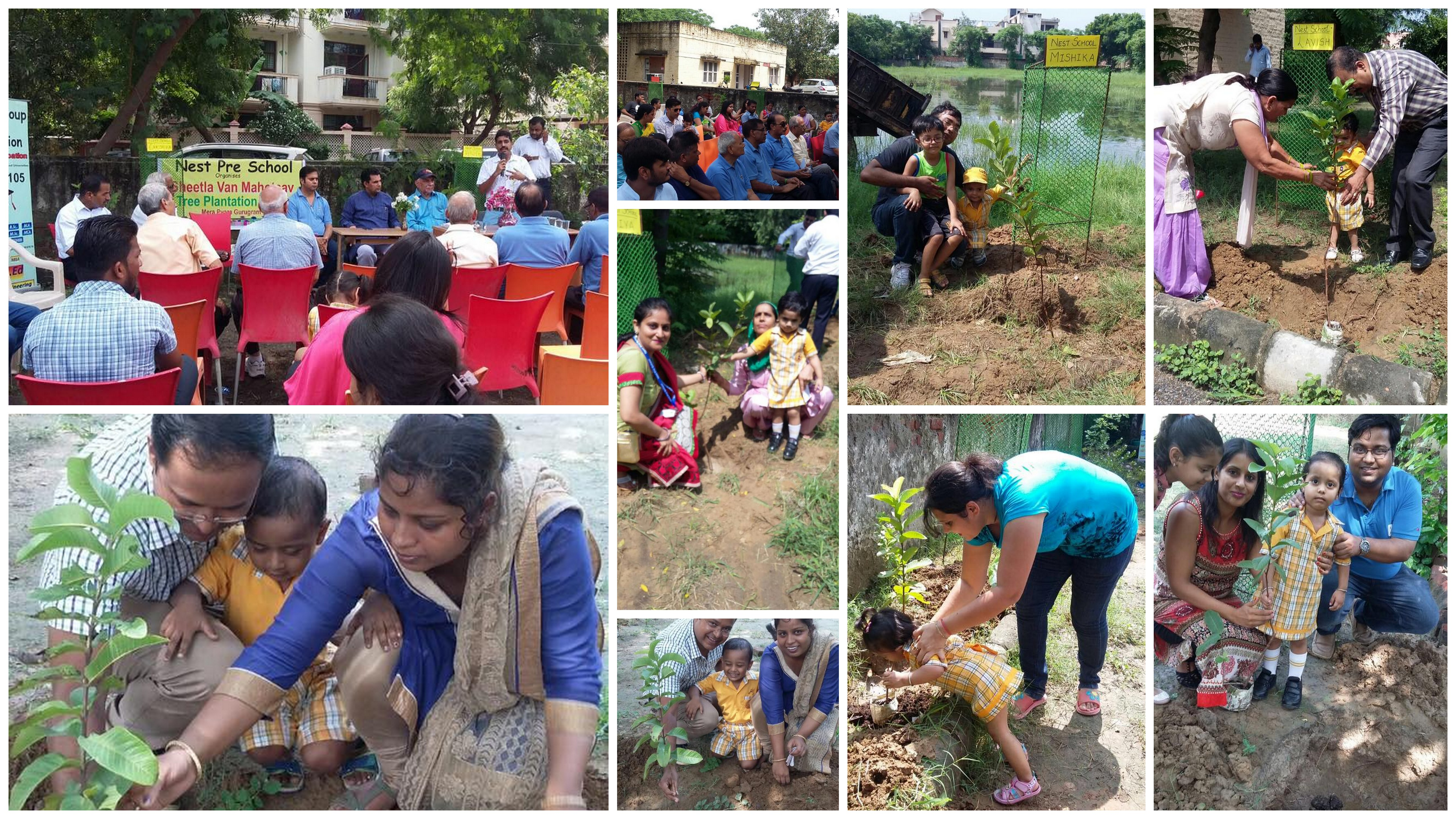 Tree Plantation Drive by Nest Group of Schools